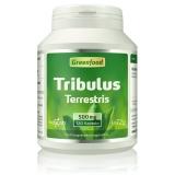 Tribulus Terrestris, 500 mg 120 Kapseln