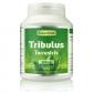 Tribulus Terrestris, 500 mg