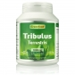 Tribulus Terrestris, 1000 mg